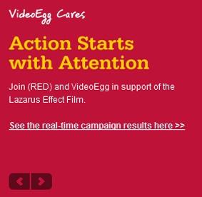 Videoegg digital advertising